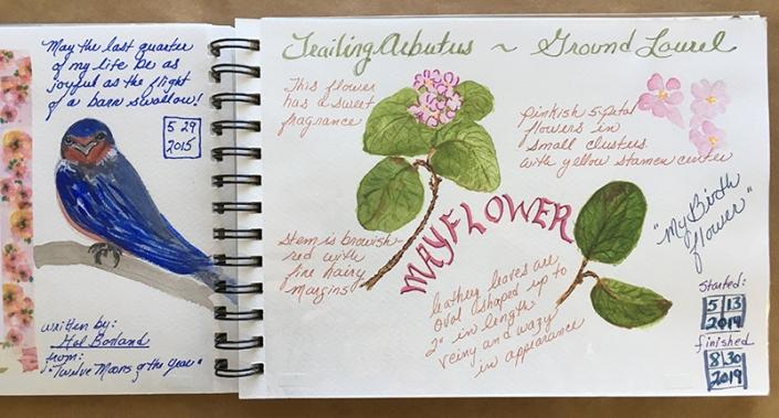 Shaw_Nature Journaling_EB